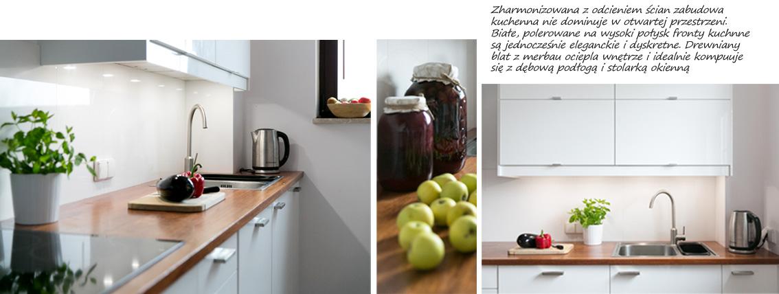 salon z kuchnia 2